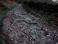 Cutthroat-Ladybower14.JPG