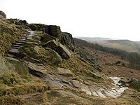 Stanage Plantation