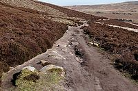 Whinstone Lee Tor to Cutthroat Bridge