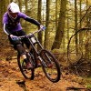 Cannock Chase – Stile Cop – 12 November